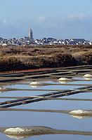 Europe/France/Pays de la Loire/44/Loire-Atlantique/Batz-sur-Mer: Les marais salants