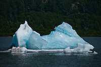 Hikers and campers enjoy the sight of the icebergs floating on Spencer Lake in the summer sun.