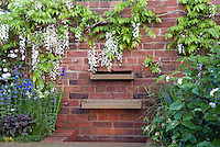 Wisteria, brick garden wall, water feature fountain waterfall, flowers, Salvia, Irises, in spring bloom