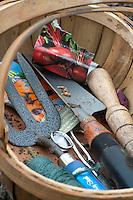 Garden tools in a basket, Lancashire.