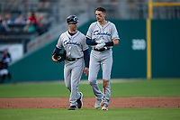 Columbus Clippers Ryan Flaherty (15) talks to manager Tony Mansolino (11) during an International League game against the Indianapolis Indians on April 29, 2019 at Victory Field in Indianapolis, Indiana. Indianapolis defeated Columbus 5-3. (Zachary Lucy/Four Seam Images)