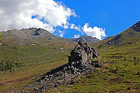 Mountains above Savage River in June