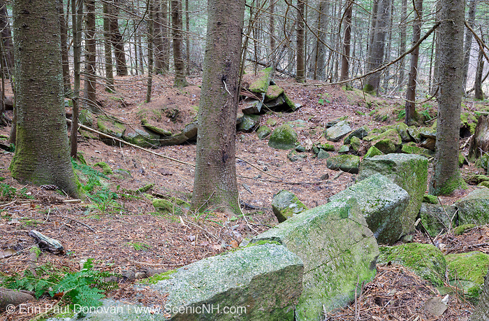 Remnants of an old cellar hole along an abandoned road in Benton, New Hampshire. This road traveled in between the old East Road and the old North and South Road (now Long Pond Road). Based on an 1860 historical map of Grafton County this is possibly the site of the David Clough farm.