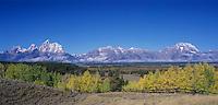 Teton Range and fence line fall colors, Grand Teton NP,Wyoming, USA