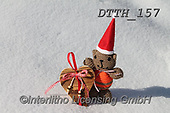 Helga, CHRISTMAS ANIMALS, WEIHNACHTEN TIERE, NAVIDAD ANIMALES, photos+++++,DTTH157,#xa#