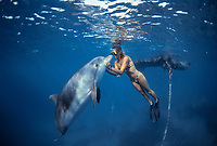 Dolphin trainer interacting with Bottlenose Dolphin, Tursiops truncatus, Dolphin Reef, Eilat, Israel, Red Sea.