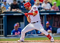 7 March 2019: Washington Nationals infielder Brian Dozier is brushed back by a pitch during a Spring Training Game against the New York Mets at the Ballpark of the Palm Beaches in West Palm Beach, Florida. The Nationals defeated the visiting Mets 6-4 in Grapefruit League, pre-season play. Mandatory Credit: Ed Wolfstein Photo *** RAW (NEF) Image File Available ***