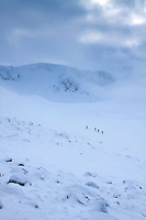 Walkers ascending onto Fiachaill a' Choire Chais from Coire an t-Sneachda, Cairngorm National Park, Badenoch & Speyside
