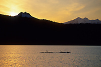 Pod of Orcas, Killer whales, Meares Inlet, Prince William Sound, Alaska