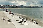 Margate Kent 'Kings Steps' onto beach. Looking east.