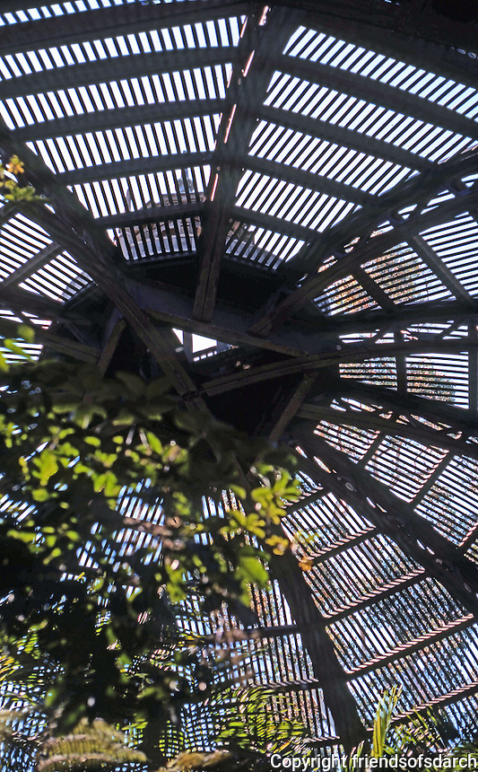 San Diego: Balboa Park, Interior of Botanical Building. Photo '78.