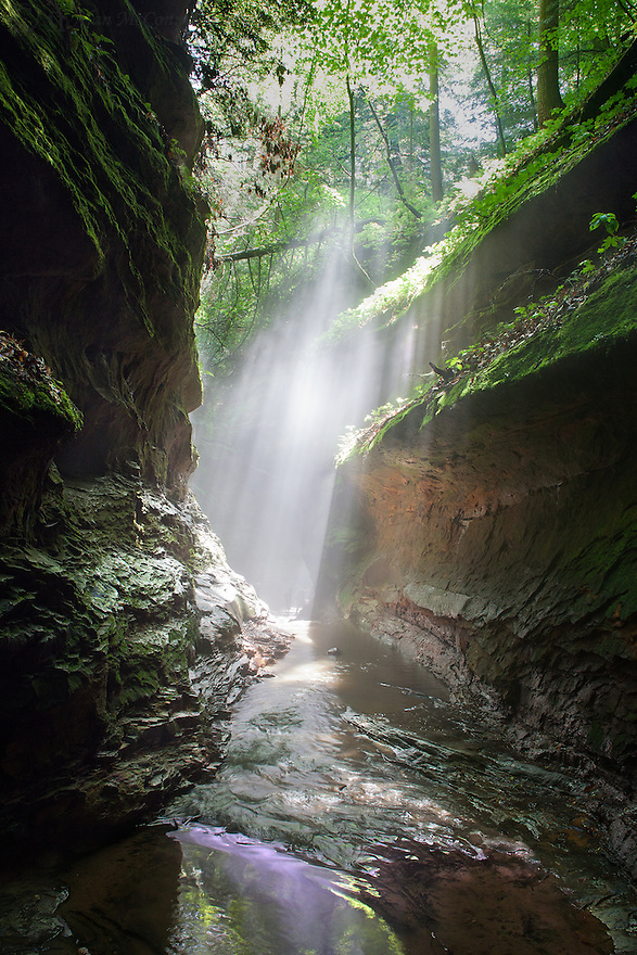 """Turkey Run Mist""<br />