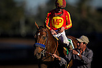 ARCADIA, CA - FEBRUARY 06: Hoppertunity #5, ridden by Flavian Prat walks to the winners circle after a victory in the San Antonio Stakes at Santa Anita Park on February 06, 2016 in Arcadia, California. (Photo by Alex Evers/Eclipse Sportswire/Getty Images)