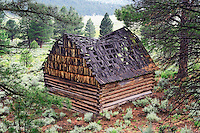 Burned out barn in Freemont National Forest. Oregon