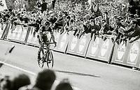 Philippe Gilbert (BEL/Quick Step floors) approaches the finish line and realises he is actually gonna win De Ronde<br /> <br /> 101th Ronde Van Vlaanderen 2017 (1.UWT)<br /> 1day race: Antwerp › Oudenaarde - BEL (260km)