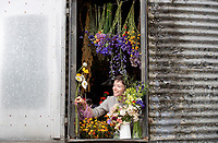 BNPS.co.uk (01202) 558833<br /> Pic: ZacharyCulpin/BNPS<br /> <br /> Swapping Flour for Flowers....<br /> <br /> Pictured: Helen looking out from one of the grain stores<br /> <br /> Helen Stickland runs her Black Shed Flower farm from 2 empty grain stores. <br /> <br /> The grain stores sits on a 2 acre site, where Helen and her husband Paul Stickland grow 500 different varieties of flowers in Sherborne, Dorset<br /> <br /> Helen and Paul are members of Flowers from the Farm, the British cut flower growers' association, which has seen membership leap by 75% in the past 2 years.