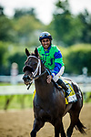 SARATOGA SPRINGS, NY - AUGUST 26: By The Moon #4, ridden by Rajiv Maragh wins the Ballerina Stakes at Saratoga Race Course on August 26, 2017 in Saratoga Springs, New York.(Photo by Alex Evers/Eclipse Sportswire/Getty Images)