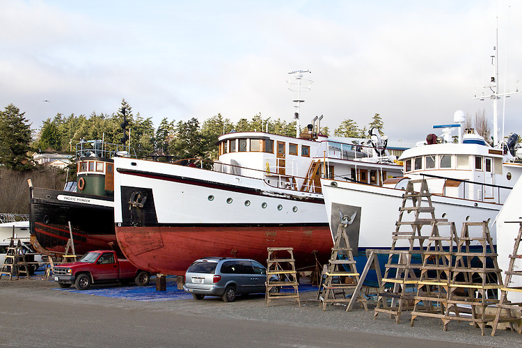 Port Townsend, Boat Haven Marina, classic wooden boats, work boats, fishing boats, hauled out in boatyard, Jefferson County, Olympic Peninsula, Puget Sound, Washington State, Pacific Northwest, United States,