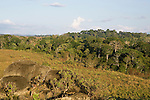 Tropical rainforest and savanna mosaic, Lope National Park, Gabon