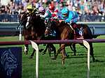 ARLINGTON HEIGHTS, IL - AUGUST 12: Dacita #1, ridden by Irad Ortiz Jr., wins the Beverly D. Stakes on Arlington Million Day at Arlington Park on August 12, 2017 in Arlington Heights, Illinois. (Photo by Jon Durr/Eclipse Sportswire/Getty Images)