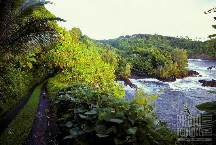 Onomea Bay and the Hawaii Tropical Botanical Garden found on the big island