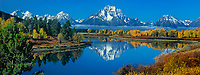 937000028 panoramic view - fall morning at oxbow bend of the snake river with mount moran in the background in grand tetons national park wyoming united states