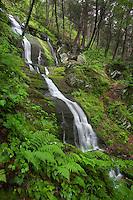 Buttermilk Falls, Delaware Water Gap, New Jersey