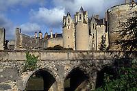 Europe/France/Pays de la Loire/49/Maine-et-Loire/Montreuil-Bellay: Le Château