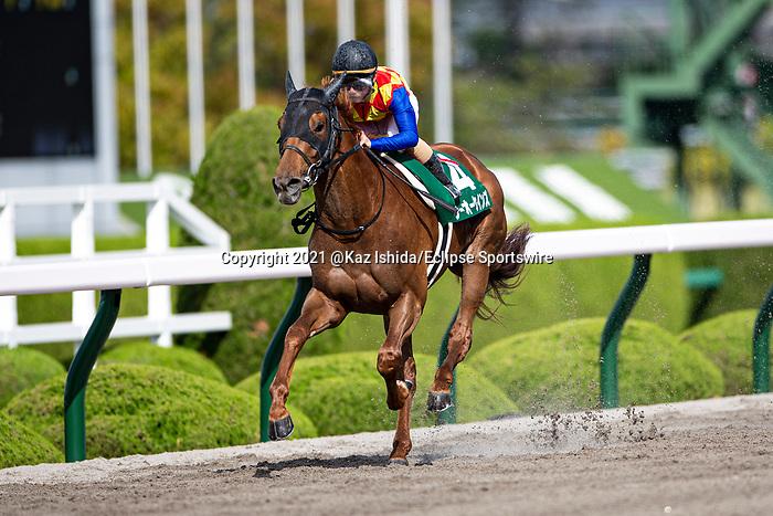 TAKARAZUKA,JAPAN-APR 18: T O Keynes ,ridden by Fuma Matsuwaka,wins the Antares Stakes at Hanshin Racecourse on April 18,2021 in Takarazuka,Hyogo,Japan. Kaz Ishida/Eclipse Sportswire/CSM