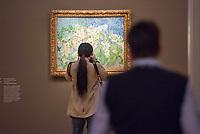 """Ausstellung """"Van Gogh. Stillleben"""" im Potdamer Museum Barberini.<br /> Die Ausstellung versammelt in einer repraesentativen Auswahl 27 Gemaelde. Von den in dunklen Erdtoenen gehaltenen Studien des Fruehwerks der Jahre 1881–1885 bis zu den in leuchtenden Farben gemalten Obst- und Blumenstillleben, die in den letzten Lebensjahren entstanden.<br /> Im Bild: Das Gemaelde """"Bluehende Kastanienzweige"""". <br /> 24.10.2019, Potsdam<br /> Copyright: Christian-Ditsch.de<br /> [Inhaltsveraendernde Manipulation des Fotos nur nach ausdruecklicher Genehmigung des Fotografen. Vereinbarungen ueber Abtretung von Persoenlichkeitsrechten/Model Release der abgebildeten Person/Personen liegen nicht vor. NO MODEL RELEASE! Nur fuer Redaktionelle Zwecke. Don't publish without copyright Christian-Ditsch.de, Veroeffentlichung nur mit Fotografennennung, sowie gegen Honorar, MwSt. und Beleg. Konto: I N G - D i B a, IBAN DE58500105175400192269, BIC INGDDEFFXXX, Kontakt: post@christian-ditsch.de<br /> Bei der Bearbeitung der Dateiinformationen darf die Urheberkennzeichnung in den EXIF- und  IPTC-Daten nicht entfernt werden, diese sind in digitalen Medien nach §95c UrhG rechtlich geschuetzt. Der Urhebervermerk wird gemaess §13 UrhG verlangt.]"""
