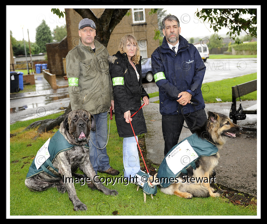"""08/08/2008  Copyright Pic: James Stewart.File Name : sct_jspa02_green_dog.JOHN MCCULLOCH WITH DUKE THE OLD ENGLISH MASTIFF, LOUISA FRENDO WITH PARIS THE CHIHUAHUA AND GRAHAM STIRLING WITH VENICE THE GERMAN SHEPPARD,   AT THE LAUNCH OF FALKIRK COUNCIL'S """"GREEN DOG WALKERS"""" PROJECT.James Stewart Photo Agency 19 Carronlea Drive, Falkirk. FK2 8DN      Vat Reg No. 607 6932 25.Studio      : +44 (0)1324 611191 .Mobile      : +44 (0)7721 416997.E-mail  :  jim@jspa.co.uk.If you require further information then contact Jim Stewart on any of the numbers above........"""