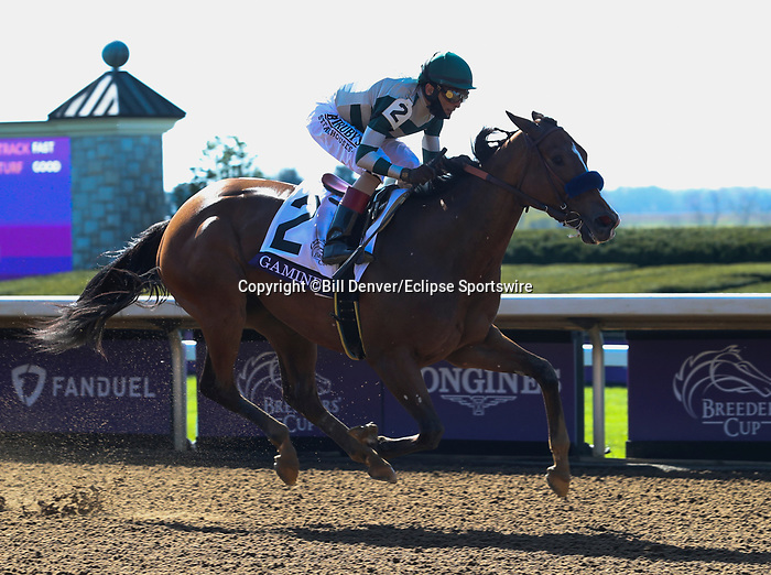 November 7, 2020 : Gamine, ridden by John Velazquez, wins the Filly & Mare Sprint on Breeders' Cup Championship Saturday at Keeneland Race Course in Lexington, Kentucky on November 7, 2020. Bill Denver/Breeders' Cup/Eclipse Sportswire/CSM