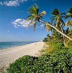 USA, Florida, Naples: Beach