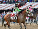 Trigger Warning returns from the race as Catholic Boy (no. 11) wins the Travers Stakes (Grade 1), Aug. 25, 2018 at the Saratoga Race Course, Saratoga Springs, NY.  Ridden by  Javier Castellano, and trained by Jonathan Thomas, Catholic Boy finished 4 lengths in front of Mendelssohn (No. 8).  (Bruce Dudek/Eclipse Sportswire)