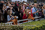 ARCADIA, CA  DECEMBER 26: Opening day crowd and two future jockeys on December 26, 2017 at Santa Anita Park in Arcadia, CA.(Photo by Casey Phillips/ Eclipse Sportswire/ Getty Images)