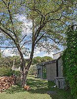 A dog sleeps in the shade of a tall tree in the garden of this modern house