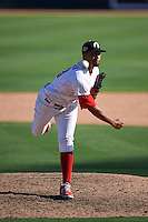 Glendale Desert Dogs pitcher Jesen Therrien (29) delivers a pitch during an Arizona Fall League game against the Mesa Solar Sox on October 13, 2015 at Camelback Ranch in Glendale, Arizona.  Glendale defeated Mesa 8-7.  (Mike Janes/Four Seam Images)