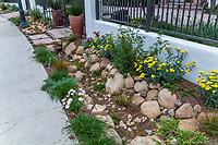 Rock lined streetside sidewalk rain and storm water capture rain garden for percolation in summer-dry garden; design Urban Water Group, Los Angeles