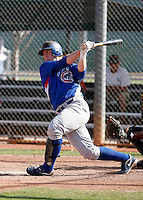 Michael Brenly - Chicago Cubs 2009 Instructional League .Photo by:  Bill Mitchell/Four Seam Images..