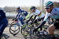 World Champion Peter Sagan (SVK/Tinkoff) riding relaxed in the bunch in the beginning kilometres of the race<br /> <br /> Kuurne-Brussel-Kuurne 2016
