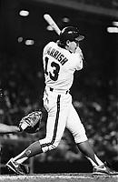 Lance Parrish of the California Angels during a 1989 season game at Anaheim  Stadium in Anaheim,California.(Larry Goren/Four Seam Images)