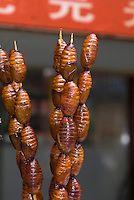 China, Peking (Beijing), auf der Snackstreet hinter Kaufhaus Baihuo Dalou auf der Wangfujing Dajie, exotisches Getier