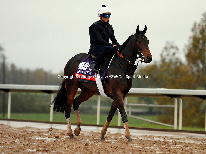 October 28, 2015:  Watsdachances, trained by Chad Brown, and owned by Michael Kisber, Bradley Thoroughbreds, and Nelson McMakin, is entered in the Breeder's Cup Filly & Mare Turf. Candice Chavez/ESW/CSM