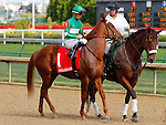 September 12, 2015:  #1 Decked Out and jockey Colby Hernandez in the $200,000 Grade 2 Pocahontas for 2 year old fillies at Churchill Downs.  Candice Chavez/ESW/CSM