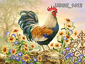 Dona Gelsinger, STILL LIFE STILLEBEN, NATURALEZA MORTA, paintings+++++,USGE1412,#i#, EVERYDAY,cock,rooster