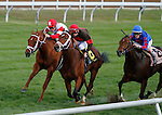 October 17, 2015:  Bottle Rocket and Brian Hernandez Jr. win the 6th race, Allowance $60,000.   Candice Chavez/ESW/CSM