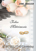 Marcello, WEDDING, HOCHZEIT, BODA, paintings+++++,ITMCWED1159,#W#, EVERYDAY