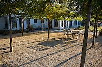 crushed rock, gravel stone patio with symetrical planting of Honey locust treees (Gleditsia), Douglas Hoerr design