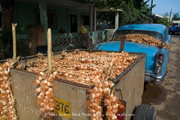 Classic American car with trailer full of garlic for sale in Vinales, Pinar del Rio Province, Cuba.