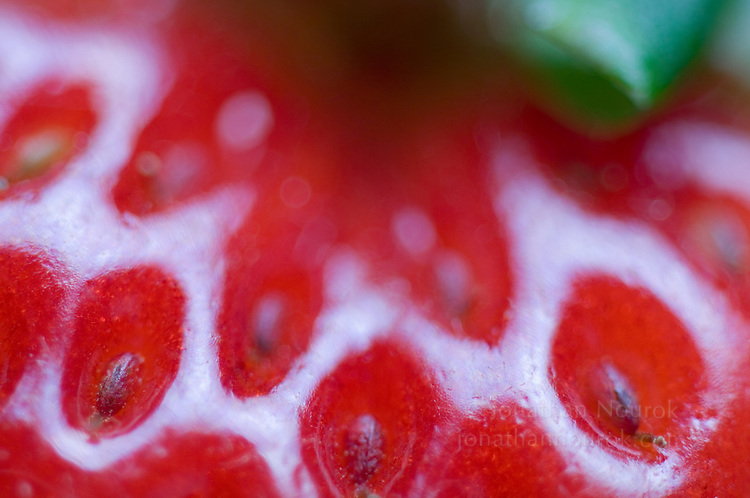 close-up of a strawberry - commercial/editorial licensing for this image is available through: http://www.gettyimages.com/detail/200245413-001/Stone